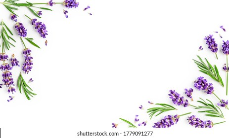 Lavender flowers and leaves creative frame on white background. Top view, flat lay. Floral composition and design. Healthy eating and alternative medicine concept