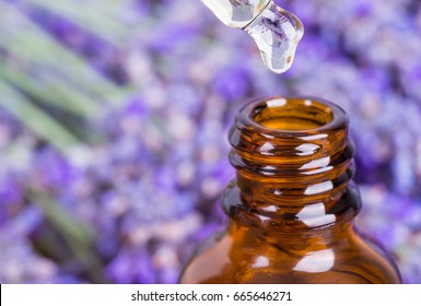 Lavender oil bottle.Essential oil, natural face and body beauty remedies.