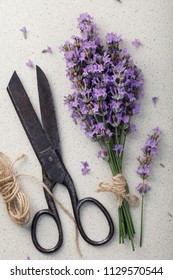 Lavender with old metal scissors and twine umbrella, top view