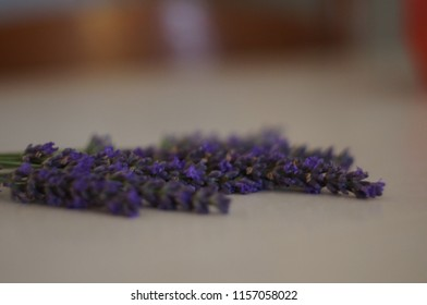 Lavender on the table