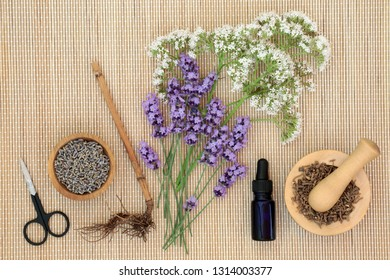 Lavender and valerian herbs & essential oil bottle on bamboo background. Used in alternative & traditional herbal medicine to improve mood, help depression, reduce stress & insomnia.