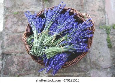 Lavender vintage. Lavender bouquet in basket.