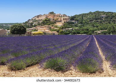 lavenders field and village