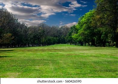 Lawn beautiful parks