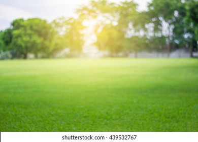 Lawn blur with soft light for background - Shutterstock ID 439532767