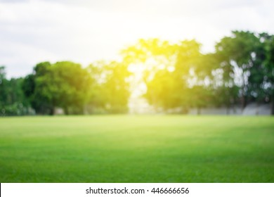 Lawn blur with soft light for background