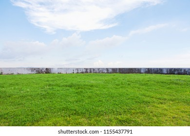 Lawn by the sea under the blue sky