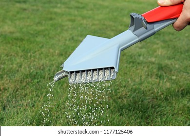 Lawn Fertilizer Being Spread By A Hand Held Spreading Machine To Feed And Treat Grass.