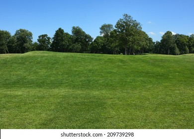 Lawn. Lawn with forest line and blue sky. The golf course.