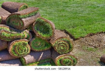 lawn, grass-plot in the rolls