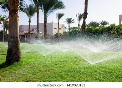 Lawn irrigation system. Spraying water on the lawn in very hot weather.