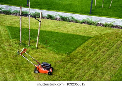 Lawn mower cutting grass on green field in yard. Mowing gardener care work tool.