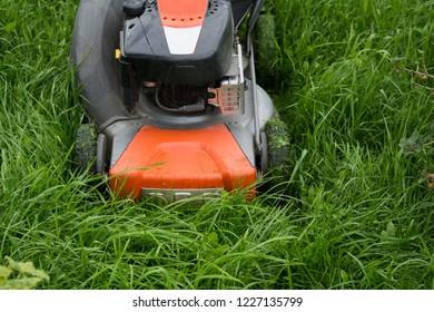 Lawn mower cutting green grass in backyard.