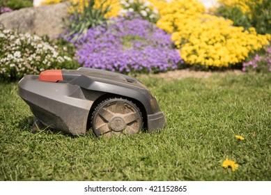 Lawn mower cutting green grass. Work alone in the garden - robot