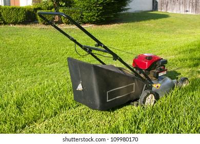Lawn mower cutting pathway in grass