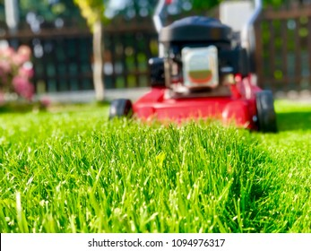 lawn mower, green lawn at the family house. summer day sunny weather. Rotary mower in the park. - Shutterstock ID 1094976317