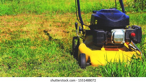 Lawn mower. Mow the lawns. Man mows the grass.