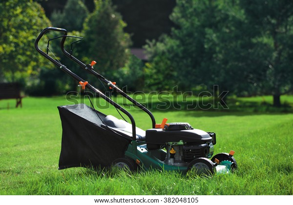 Lawn mower on a lawn on a background of trees