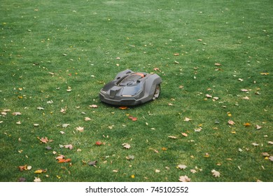 Lawn mower on background of trimmed green lawn