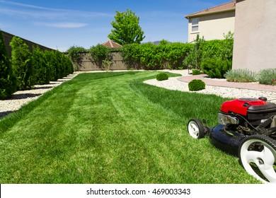 Lawn mower on green grass, backyard