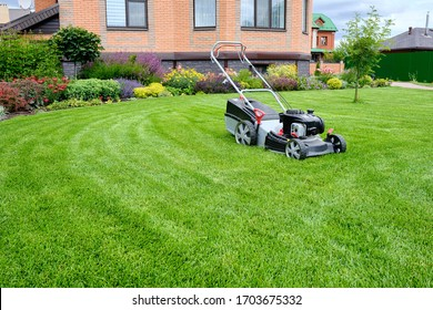 A lawn mower on a lush green lawn surrounded by flowers. The back yard of the house. - Shutterstock ID 1703675332