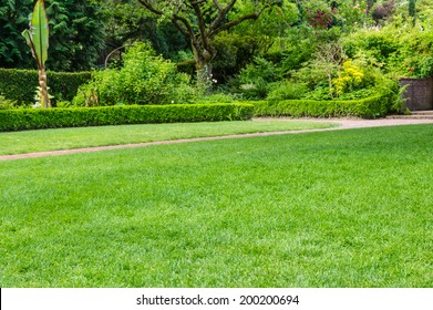 Lawn and pathway in a large garden