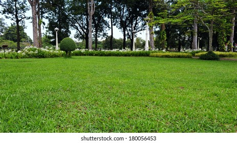 Lawn in a Peaceful Green Park
