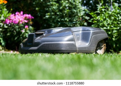 The lawn robot mows the lawn automatically daily according to the set schedule