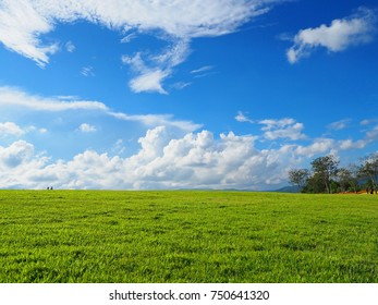 Lawn with sky and clouds