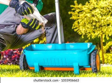 Lawn Spring Fertilization. Caucasian Gardener Resupply His Fertilization Tool. Fertilize Turf in Late Spring