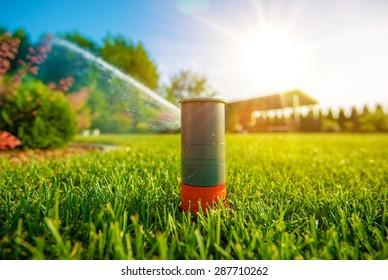 Lawn Sprinkler in Action. Garden Sprinkler Watering Grass. Automatic Sprinklers.