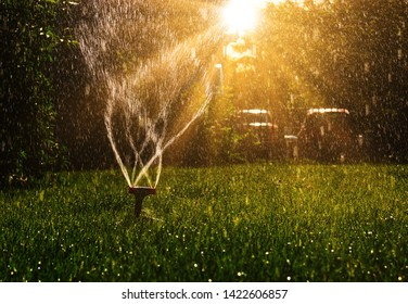 Lawn sprinkler with a lot of copy-space and sun shining from back side