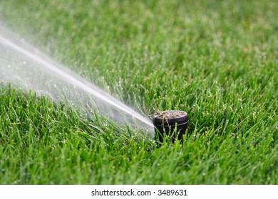 Lawn sprinkler head - plastic