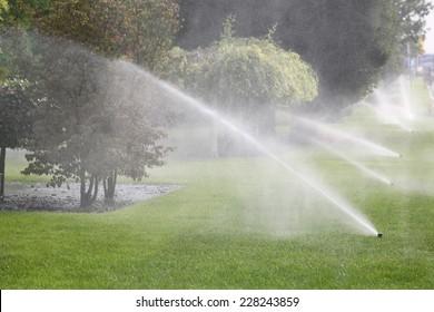 Lawn Sprinkler Spraying Water Over Green Grass in Garden