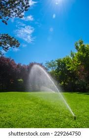 Lawn Sprinkler In Sunny Park