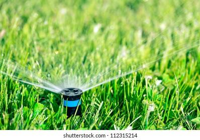Lawn sprinkler watering green lawn