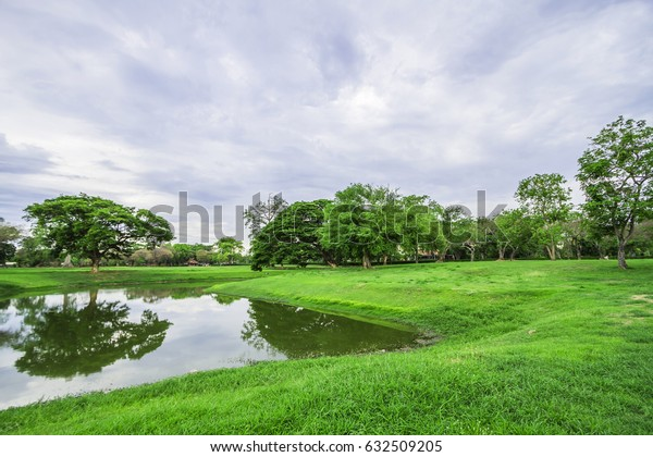 Lawn with trees and beautiful lagoon