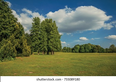 Lawn, trees and blue sky in the late afternoon light, at Laeken Park in Brussels. Vibrant and friendly, is the country's capital and administrative center of the EU. Central Belgium.