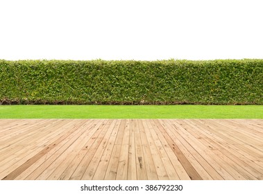 Lawn and wooden floor with hedge isolated.