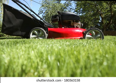 Lawnmower mowing grass at low angle