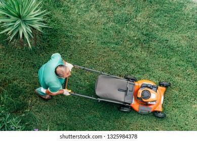 Lawnmower mows the green grass top view.  Bald man gardener cuts the grass.  Garden care.