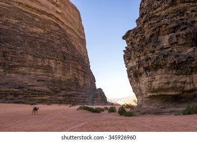 Lawrence of Arabia valley in Wadi Rum desert, Jordan. Wadi Rum, also known as The Valley of the Moon, is a valley cut into the sandstone and granite rock in southern Jordan 60 km to the east of Aqaba.