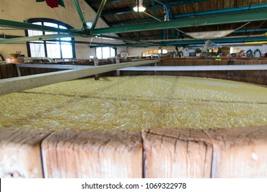 Lawrenceburg, KY, USA - November 6, 2016 : Inside tour at historic Four Roses Bourbon Distillery. Fresh corn mash bubbling and fermenting.