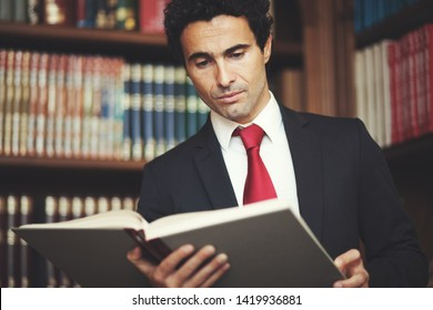 Lawyer in his studio reading a book