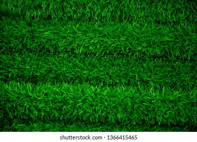 layer of green turf on shelf in supermaket