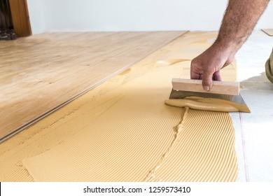 Parkett aus hellem Holz. Kleber auf den Boden legen.