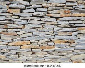 Laying. Wall. Natural stone. Crimean gerbil.
