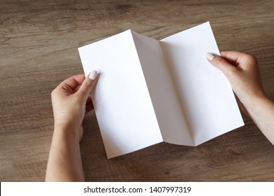 The layout of the booklet in female hands on a wooden table
