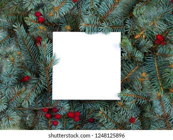 Layout made of Christmas tree branches, red berries and paper card note. Mockup, flat lay. New Year winter season concept