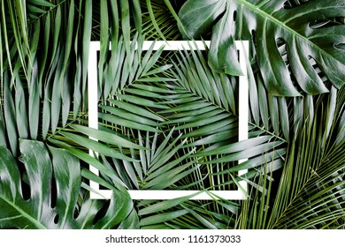 Layout made tropical palm leaves Monstera and white frame for text. Flat lay, top view